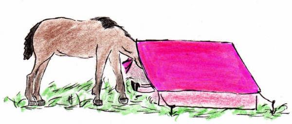 Lola la tente rose bonbon sous la pluie
