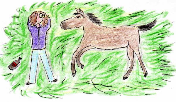 Lola et habélard se reposant sur l'herbe
